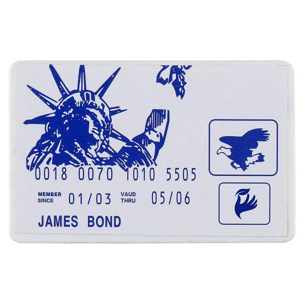 Credit Card Lock Pick Set (2 Pieces)