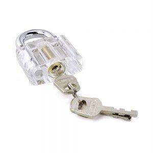 Transparent Disc Detainer Practice Lock