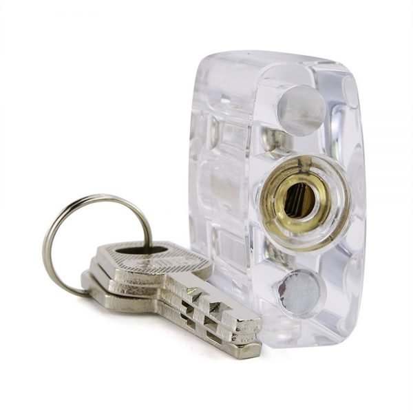Transparent Disc Detainer Practice Lock